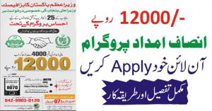 How to apply for Insaf Imdad Package (Complete Guide)