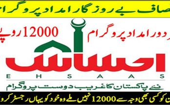 How To Register for Ehsaas Labour Program Portal Online