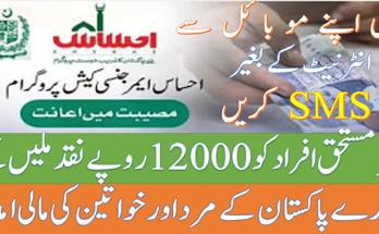 How to Apply in Ehsaas Emergency Cash Program via SMS Without Internet